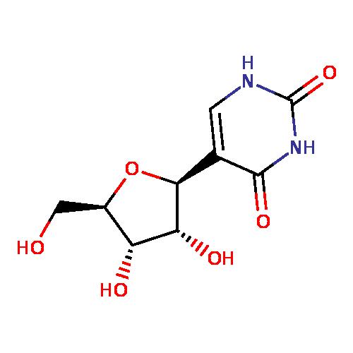 TRNA pseudouridine13 synthase  Wikipedia